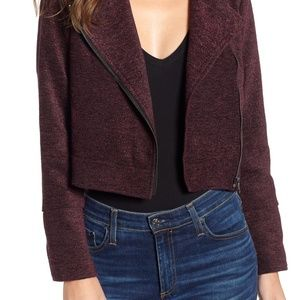 NWT Cupcakes & Cashmere Chenille Moto Jacket Large
